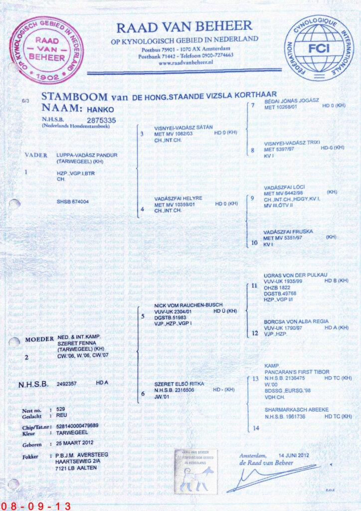 Stamboom Hanko