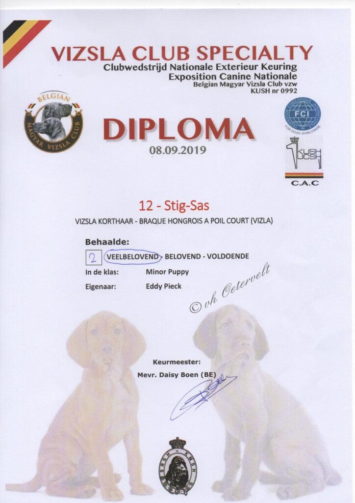 Diploma Vizsla Vereniging